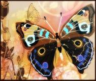 Farfalla paited variopinta Immagine Stock Libera da Diritti