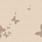 Farfalla senza cuciture Fotografia Stock Libera da Diritti