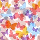 Farfalla senza cuciture colorata del modello Immagini Stock