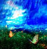 Farfalla su verde file fotografie stock libere da diritti