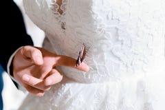 Farfalla sul vestito della sposa immagini stock libere da diritti