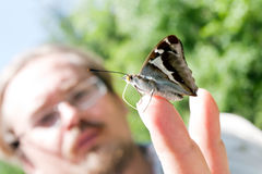 Farfalla sulla mano dell'uomo Fotografia Stock Libera da Diritti