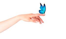 Farfalla sulla mano della donna. Nel moto Fotografia Stock Libera da Diritti