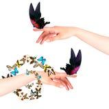 Farfalla sulla mano della donna. Nel moto Fotografie Stock Libere da Diritti