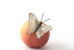 Farfalla sulla mela fotografia stock