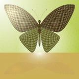 Farfalla sulla parete e la sua riflessione su un hori Immagini Stock