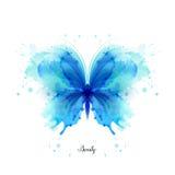Farfalla traslucida dell'estratto blu bello dell'acquerello sui precedenti bianchi Fotografia Stock