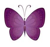 Farfalla variopinta di vettore Fotografie Stock