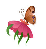Farfalla variopinta di vettore sul fiore Fotografia Stock