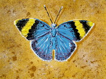 Farfalla verniciata Fotografie Stock Libere da Diritti