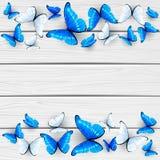 Farfalle blu e bianche su fondo di legno Fotografia Stock