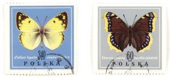 Farfalle - collectio dei bolli Immagini Stock Libere da Diritti