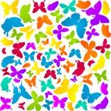 Farfalle a colori Immagine Stock