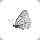 Farfalle di Aporia Crataegi illustrazione di stock