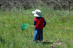 Farfalle di cattura del bambino Immagini Stock Libere da Diritti