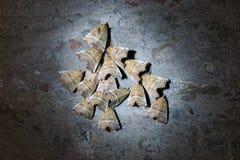 Farfalle di notte Fotografia Stock Libera da Diritti