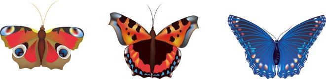 Farfalle di vettore Immagini Stock