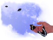 Farfalle a disposizione Immagini Stock