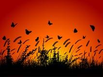 Farfalle e fogliame royalty illustrazione gratis