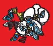 Farfalle ed orchidee bianche fotografie stock libere da diritti