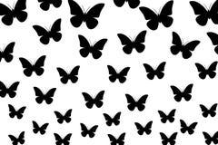 Farfalle nere su fondo bianco, carta da parati senza cuciture, illustrazione, vettore Fotografie Stock