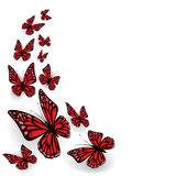 Farfalle ornamentali Fotografie Stock Libere da Diritti
