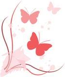 Farfalle in primavera Fotografia Stock