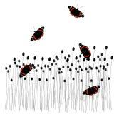 Farfalle sopra al prato Fotografia Stock Libera da Diritti