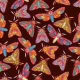 Farfalle su fondo scuro illustrazione di stock