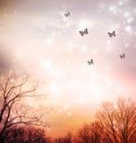 Farfalle sul fondo rosso degli alberi Fotografia Stock