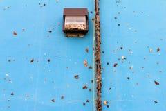 Farfalle sulla parete blu Fotografie Stock