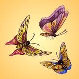 Farfalle a tre colori illustrazione vettoriale