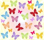 Farfalle variopinte Immagini Stock