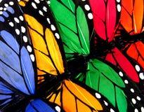 Farfalle variopinte Fotografia Stock