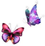 Farfalle illustrazione vettoriale