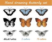 Farfalle variopinte su fondo bianco Fotografie Stock