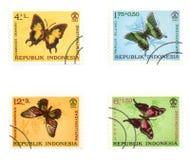 Farfalle variopinte sui bolli dell'alberino Fotografia Stock