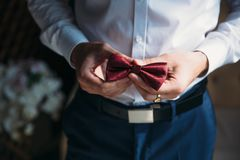 Farfallino della tenuta dello sposo dell'uomo d'affari del primo piano in sue mani Concetto dei vestiti alla moda di eleganza deg Fotografie Stock