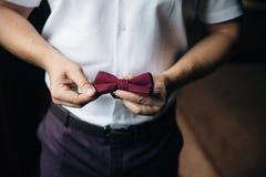 Farfallino della tenuta dello sposo dell'uomo d'affari del primo piano in sue mani Concetto dei vestiti alla moda di eleganza deg Fotografia Stock Libera da Diritti