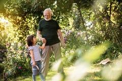 Farfar som leder hans sondotter för att arbeta i trädgård arkivbild