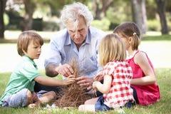 Farfarundervisningbarnbarn som bygger lägerbrand Royaltyfria Bilder
