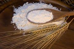 Farina bianca con le orecchie del frumento Fotografie Stock Libere da Diritti