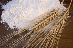 Farina bianca con le orecchie del frumento Immagini Stock