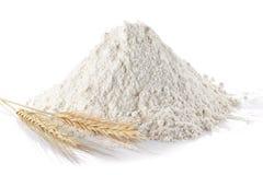 Farina di frumento Immagini Stock