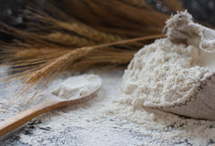 Farina di frumento in borsa di tela da imballaggio, cucchiaio di legno ed orecchie di grano, fuoco selettivo Immagini Stock