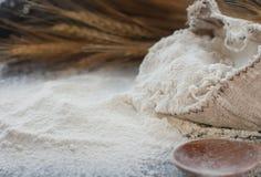 Farina di frumento in borsa di tela da imballaggio, cucchiaio di legno ed orecchie di grano, fuoco selettivo Immagini Stock Libere da Diritti