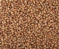 Farina di grano saraceno Fotografie Stock Libere da Diritti