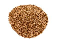 Farina di grano saraceno Immagine Stock
