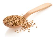 Farina di grano saraceno in cucchiaio Immagine Stock Libera da Diritti