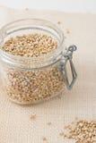 Farina di grano saraceno di Uroasted in un barattolo di vetro Fotografia Stock Libera da Diritti